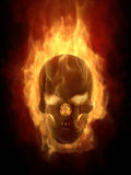 Burning skull in hot flame. S Stock Image