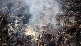 Burning and smoking heap of branches and leaves. Burning and smoking heap of wooden branches and leaves foliage. Slow motion stock footage