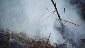 Burning and smoking heap of branches and leaves. Burning and smoking heap of wooden branches and leaves foliage. Slow motion stock video footage