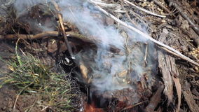 Burning and smoking heap of branches and leaves. Burning and smoking heap of wooden tree branches and leaves foliage. Slow motion stock video