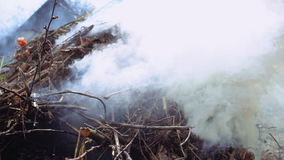 Burning and smoking heap of branches and leaves. Burning and smoking wooden tree branches and leaves foliage. Slow motion stock video footage