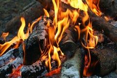 Burning and smoking wood. Logs royalty free stock photos