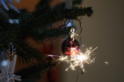 Burning sparkler on Christmas tree Stock Image