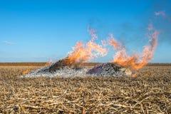Burning straw Stock Images