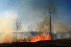 Burning of straw on the field smoke fire electric poles stock image