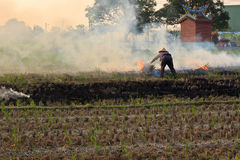 Burning straw and peasant woman Royalty Free Stock Photo