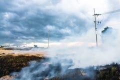 Burning straw in rice plantation. Burning straw in rice plantation one cause to global warming Royalty Free Stock Photo