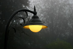 Burning street lamp. On a misty raining evening Stock Photography