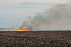 Burning stubble on farmers field Royalty Free Stock Photography