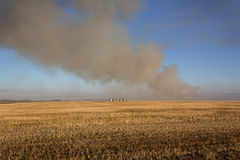 Burning stubble. Smoke from  burning stubble in a farm field Stock Photos