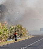 Burning sugar cane. Murwillumbah NSW Australia Stock Photos
