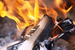 burning trä Royaltyfria Bilder