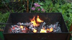 burning trä för brazier Brand flammor Galler eller grillfest arkivfilmer