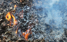 Trash burning  Royalty Free Stock Photos