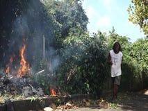 Burning trash in the tropics. A smoky blaze in a bushy garden in the caribbean stock video
