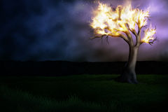 Burning Tree. Illustration of a burning tree in a field of grass under a hazy night sky Royalty Free Stock Images