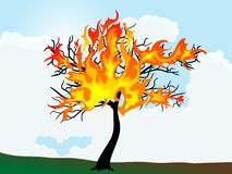 Burning tree Royalty Free Stock Image