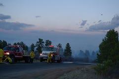 Burning Tree Fire Stock Photos