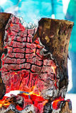Burning tree stump in winter frosty day Royalty Free Stock Photo