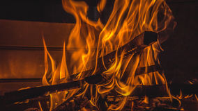burning vedträ Royaltyfri Fotografi