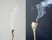 Burning white sage Royalty Free Stock Image