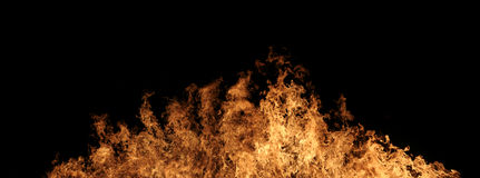 Burning wildfire Royalty Free Stock Images
