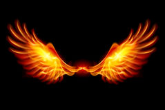 Burning Wings. Wings in Flame and Fire. Illustration on black Royalty Free Stock Image