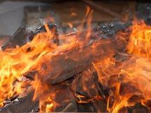 Burning wood. Burning logs of firewood Stock Photos