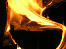 Burning wood. Firewood, flames, coal Royalty Free Stock Image