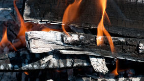 Burning wood on the barbecue Royalty Free Stock Image