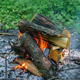 Burning wood for barbecue. The fire in the forest Royalty Free Stock Image