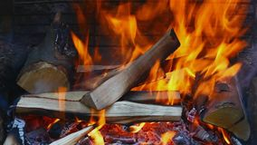 Burning wood stock video