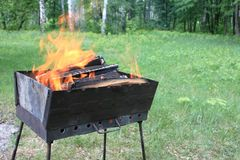 Burning wood in a brazier Royalty Free Stock Photography