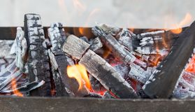Burning wood in a brazier. In the park in nature Royalty Free Stock Image