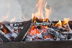 Burning wood in a brazier. In the park in nature Royalty Free Stock Photos