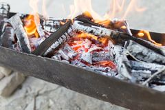 Burning wood in a brazier. In the park in nature Stock Images