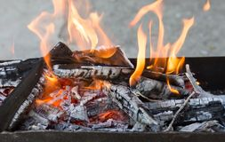 Burning wood in a brazier. In the park in nature Royalty Free Stock Photo