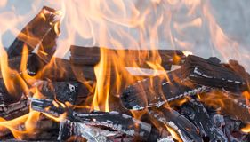Burning wood in a brazier. Photos in the studio Stock Photos