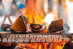 Burning wood in a brazier Royalty Free Stock Photos