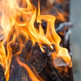 Burning wood in a brazier. In the park in nature Stock Photo