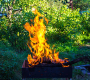 Burning wood in a brazier. Strong fire in the grill. Royalty Free Stock Photography