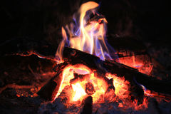 Burning wood on campfire Stock Photos