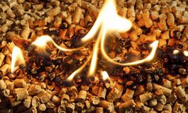 Burning Wood chip biomass fuel a renewable alternative source of Royalty Free Stock Image