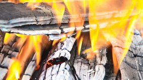 Burning wood and coal. stock video footage