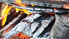 Burning wood and coal. stock footage