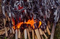 Burning wood and coal in fireplace. Closeup of hot burning wood, Royalty Free Stock Photos