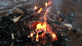 Burning wood in the cold night, outdoor winter campfire stock video