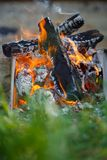 Burning wood at day. Campfire at tourist camp at nature in garde. N. Cooking barbecue Stock Photo