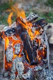 Burning wood at day. Campfire at tourist camp at nature in garde. N. Cooking barbecue Stock Image