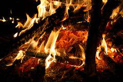 Burning wood in the fire Stock Photo